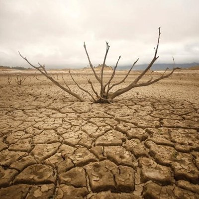 Agri WC convenes to manage drought