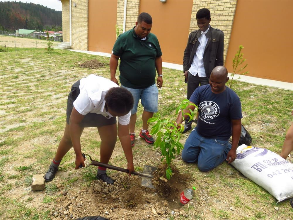 Concordia High goes green