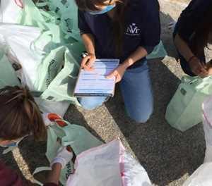 Plett joins world in coastal clean-up