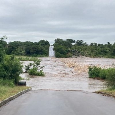 Kruger Park roads flooded as Eloise brings heavy rain to SA's north