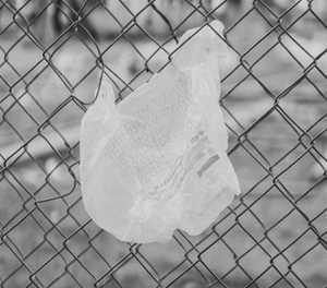 Amended plastic bag regulations published for implementation