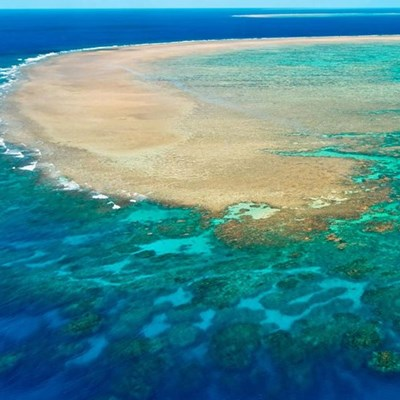 Intervention 'could buy 20 years' for declining Great Barrier Reef