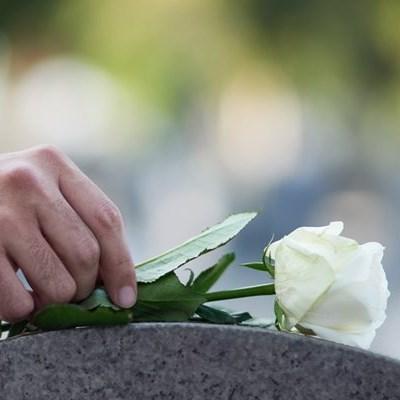 'Afgemerkte blokke in begraafplaas'