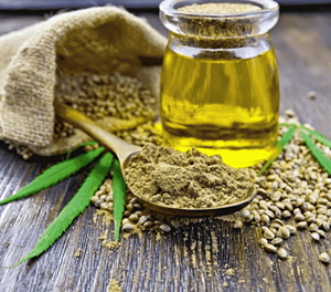 Cannabis and your skin – Part 1