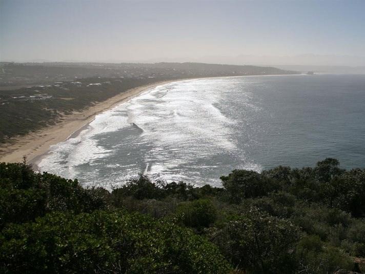 Shark sighted: Beaches closed