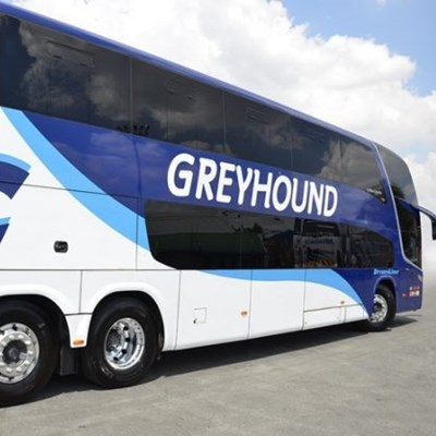 Greyhound has to pay for pensioner's injuries