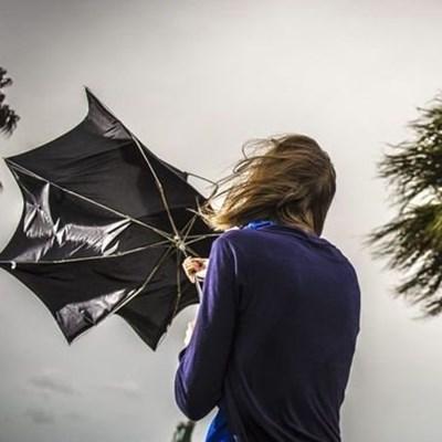 Severe weather alert: Damaging winds