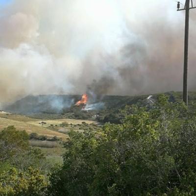 Fire update: Saturday 14:00