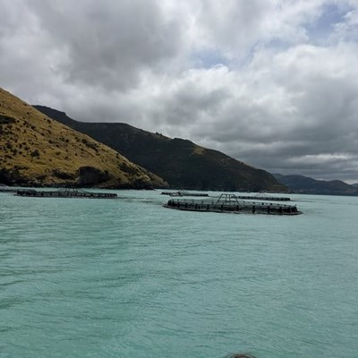Aquaculture projects to create jobs