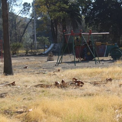 Park still in filthy state