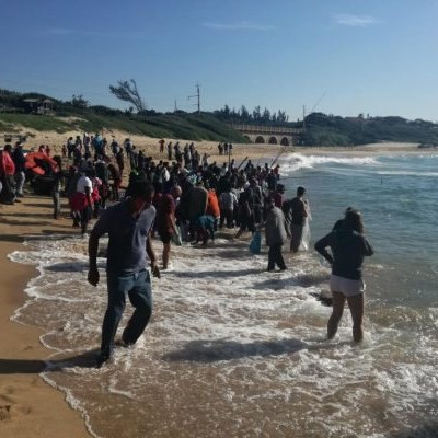 [WATCH] Sharks attracted to the South Coast as sardine activity increases