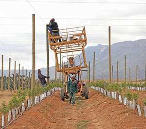 New hope for failed land reform farm