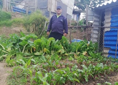 Food Garden Project by George Municipality