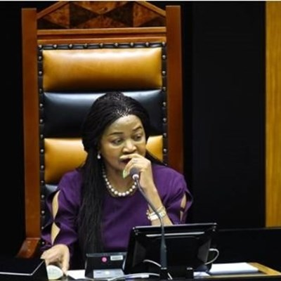 MPs did nothing while SA was being looted, says Outa