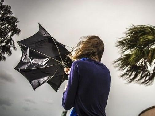 Damaging winds forecast