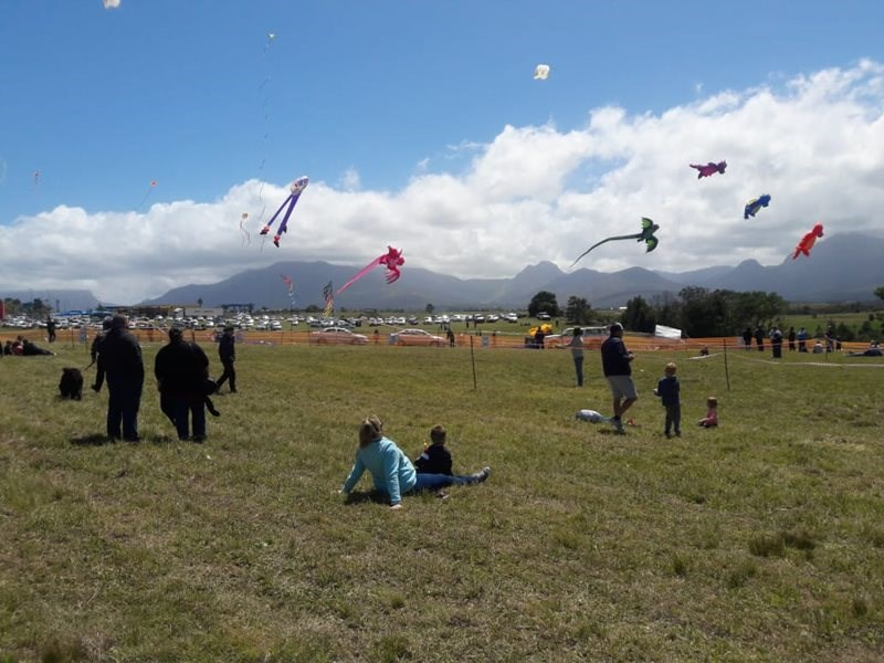 Windy weather perfect for Kite Festival