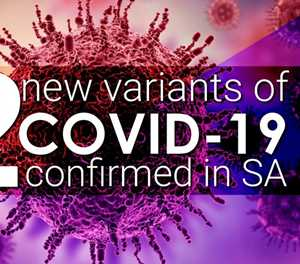 Covid-19: 1 of 2 new variants confirmed in SA