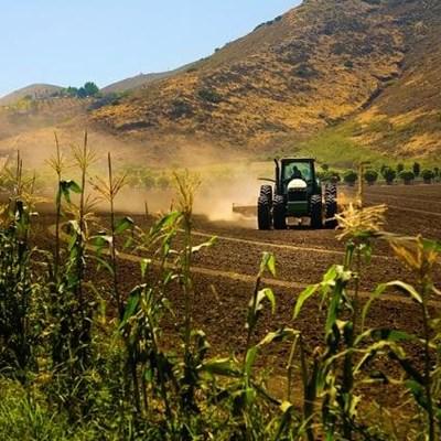 Saving our medium-sized farms