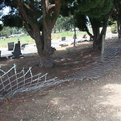 Crime, vandalism and neglect at Blanco cemetery