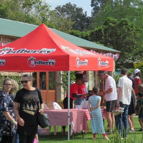 Strawberry Festival in full swing