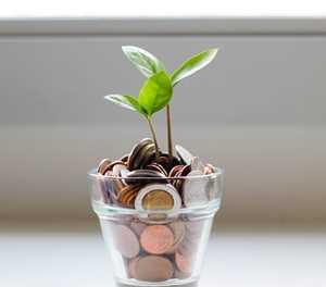 Investment basics for children