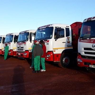 Mielies vir Suid-Kaap-boere