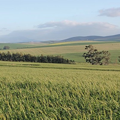 Deadline to comment on expropriation law extended