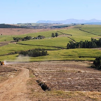 Tongaat Hulett clawing its way out of financial peril