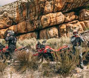 Honda quest true adventure 2020 postponed due to Covid-19