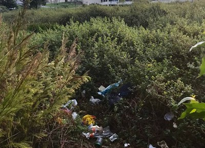 George hospital challenges residents to Madiba Day clean-up