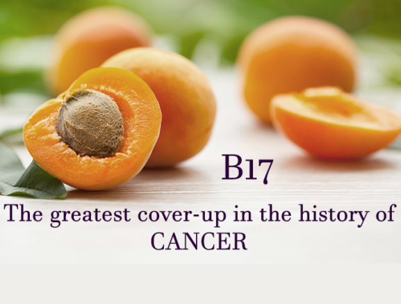 Vitamin B17 cures cancer – true or false? | Oudtshoorn Courant
