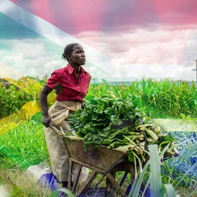 Farming aids fight against poverty