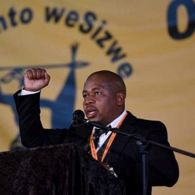 Mzwandile Masina dares ANC to fire him over 'WMC' views, gets support from Malema