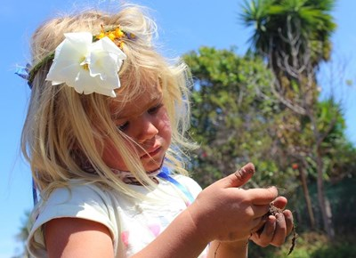 Raphaeli Waldorf School celebrate national Garden Day