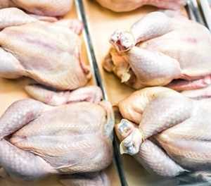 End could be in sight for chicken tariffs wars