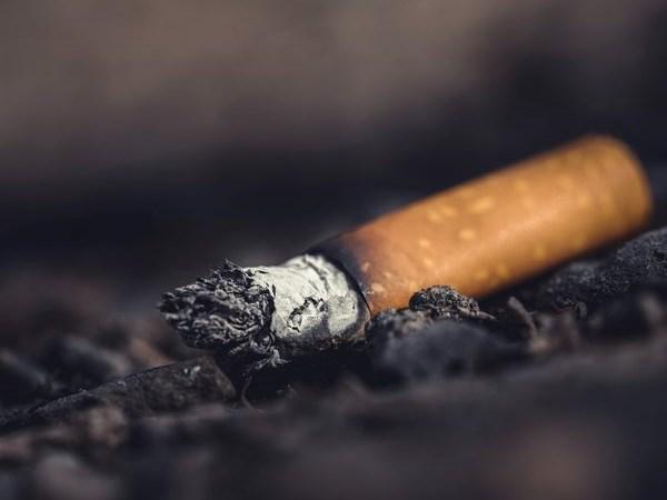 Illegal cigarettes valued at R18-million destroyed