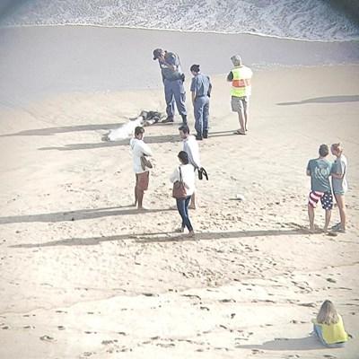 Missing fisherman's body found on beach