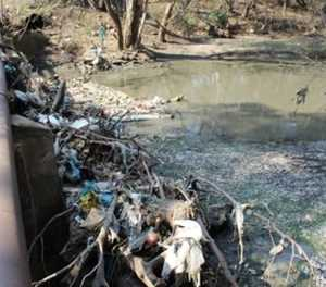 Water and sanitation dept takes Tshwane metro to court over river pollution