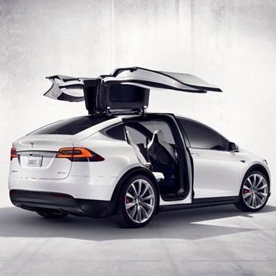 Rubicon brings 1 Tesla SUV to SA