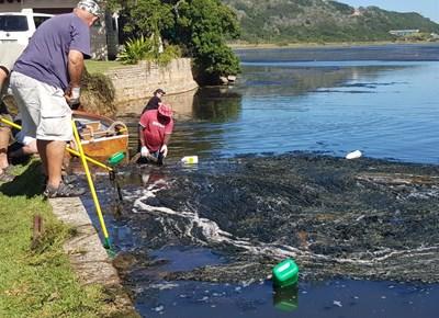 Great Brak River clean-up