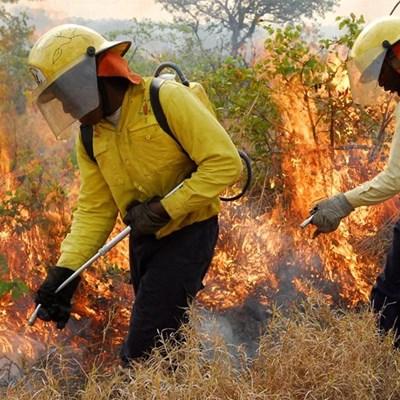 Controlled fires: Garden Route Dam area