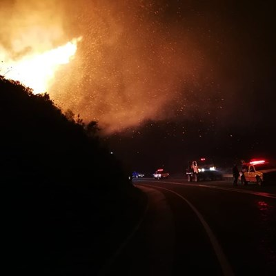 Crews fight vegetation fire