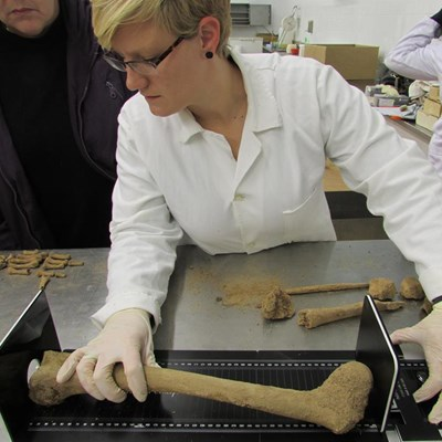 From Crime Scene To Conviction Forensic Anthropologist Bares The Bones George Herald