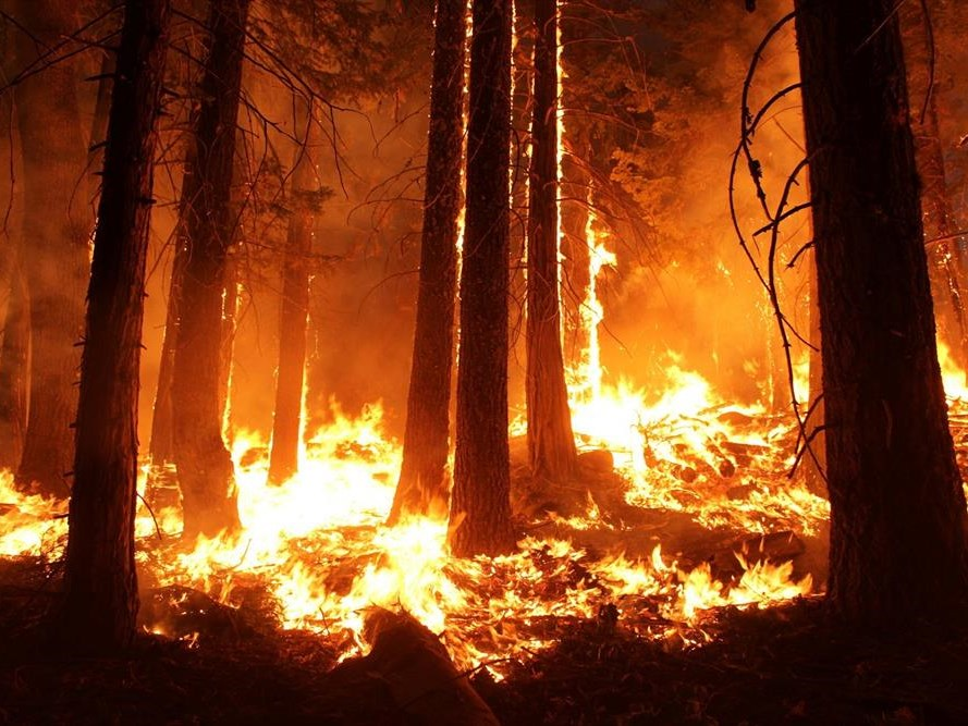 GREF focus on fire prevention in 2020