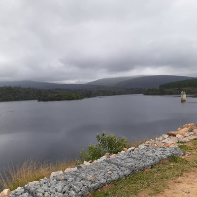 Garden Route Dam level update