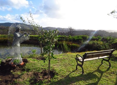 Knysna Fires: Garden of Remembrance
