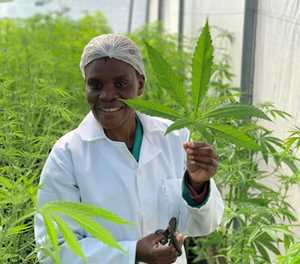 South Africa's largest medical cannabis facility unveiled by Cannsun Medhel Group PLC