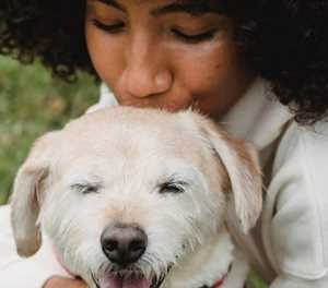 Could your pet have a food allergy?