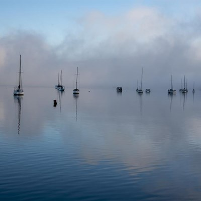 SAWS reveals what the fog is all about