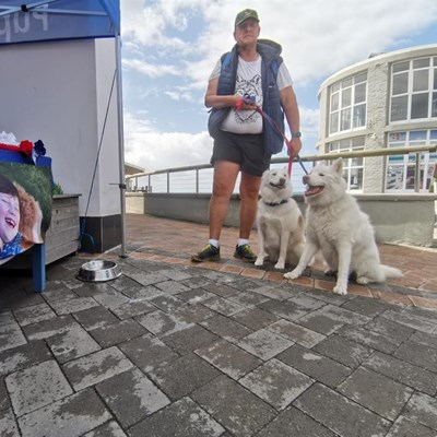 Dogs, owners enjoy special day